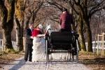 poroka barbare in gregorja kobilarna lipica in grad miramar